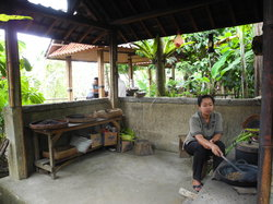 Luwak Civet Coffee Farm