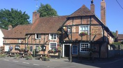 The Plume of Feathers