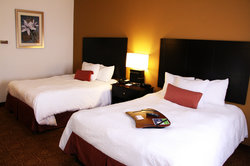 Hampton Inn and Suites Toledo-North
