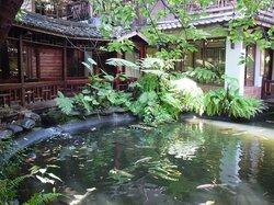 池 (36815129)