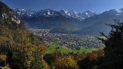 Interlaken from Beatenburg road