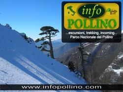 Info Pollino