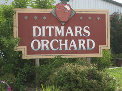 Ditmars Orchard