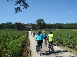 Bourgogne Evasion Burgundy Bike Tour by Active Tours