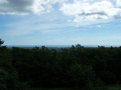 Mount Agamenticus