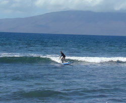 Zack Howard Surf