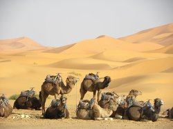 Trips to Morocco