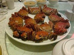 THe Orange Lobster