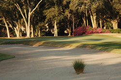 Port Royal Golf Club - Robber's Row Course