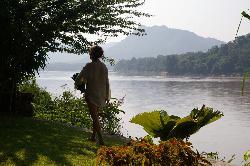 le jardin au bord du fleuve