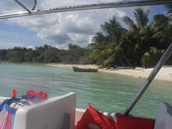 Excursion a Isla Saona