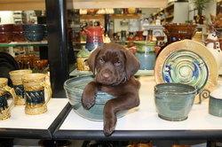 La Placa Pottery Works