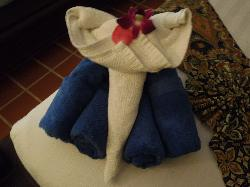 the folded towels in day 1