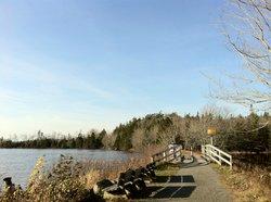 Bayer Lake Loop Trail