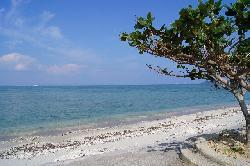 道路脇のビーチ