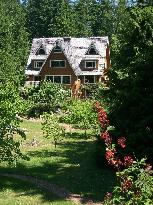 Green Cat Guest House and B&B