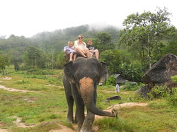 Amazing Bukit Safari