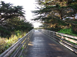 Half Moon Bay Coastside Trail