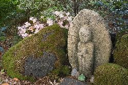 a secret spot in the garden