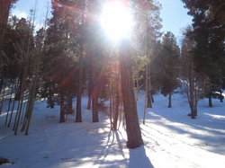 Mount Lemmon Ski Valley