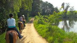 SA Trails