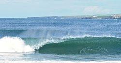 Ben's Surf Clinic
