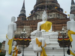Sight Seeing Bangkok
