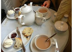 Little Shambles Tea Room