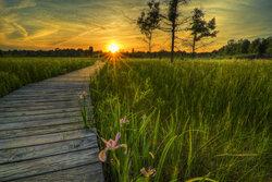 Irwin Prairie State Nature Preserve