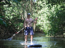Puerto Rico Paddle Board Tours