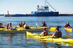 Kayak Tour in Tallinn Bay
