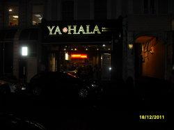 Ya Hala