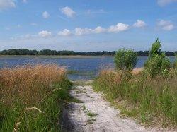 Lake Rogers Park