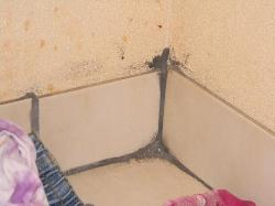 mold in corner under bathroom sink