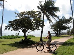 Coconut Coasters Beach Bike Rentals