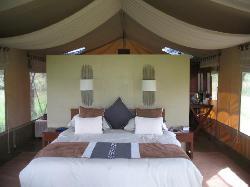 Naboisho Camp, Asilia Africa