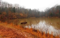 Reedy Creek Nature Center and Preserve