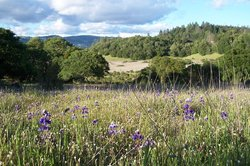 Annadel State Park