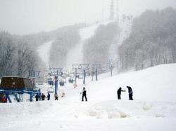 Snow on the mountain!