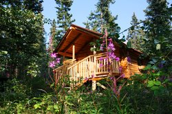 Tagish Wilderness Lodge