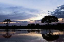 Sunset at Ziwani Camp
