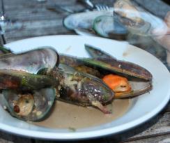 Marlborough greenlip mussels