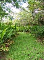 Hana Maui Botanical Gardens