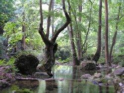 Reserva Sierra Gorda