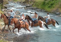 Blue River Hot Springs Eco-Adventure Tours