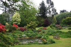 Beech Court Gardens