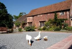 Gurney Manor Mill