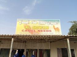 Al Sawan Camel Track