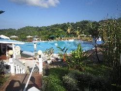 Sicht auf den Pool und einen Teil des Gartens