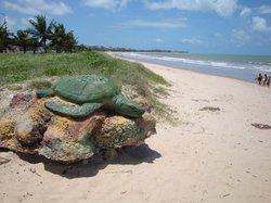 Intermares Beach